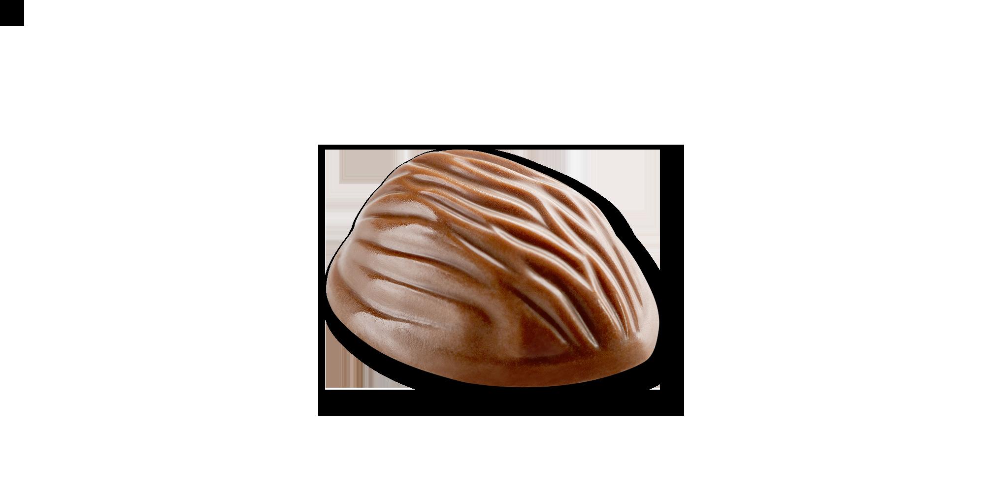 color-cioccolato-noce